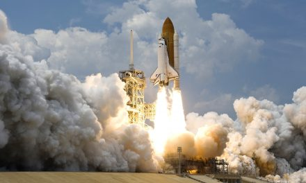 Rockets, Plants, and Networking